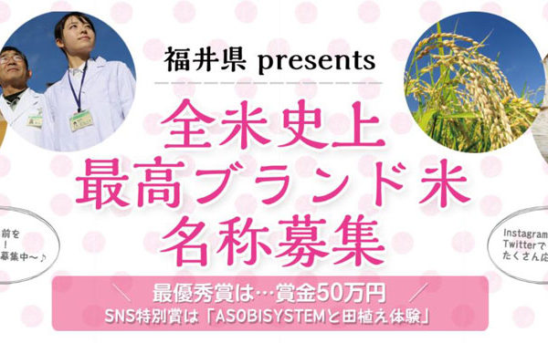 SNS活用で応募数10万件以上、 福井県新ブランド米名称募集キャンペーン